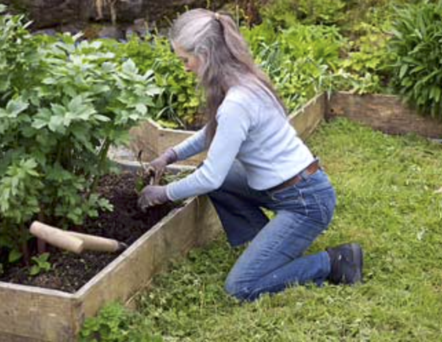 How to avoid back pain whilst gardening